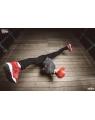 street dance life profil - PILSOON